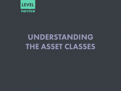 UNDERSTANDING THE ASSET CLASSES