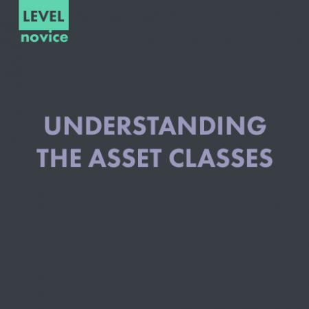 UNDERSTANDING THE ASSET CLASSES